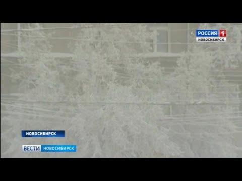 Экстренное предупреждение: в ближайшие дни в Новосибирской области похолодает до -40°С