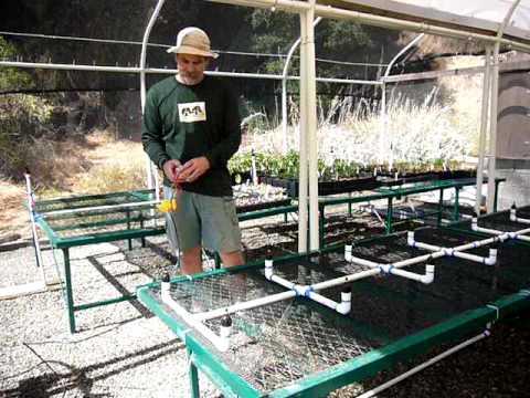 Lcwp Nursery Irrigation System 1