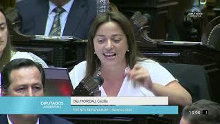 Diputada Moreau Cecilia - Sesión 12-09-2019 - PL