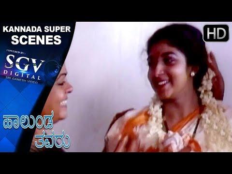 Super Last Climax Scenes   Hallunda Thavaru Kannada Movie   Kannada Scenes  Dr.Vishnuvardhan,Sithara