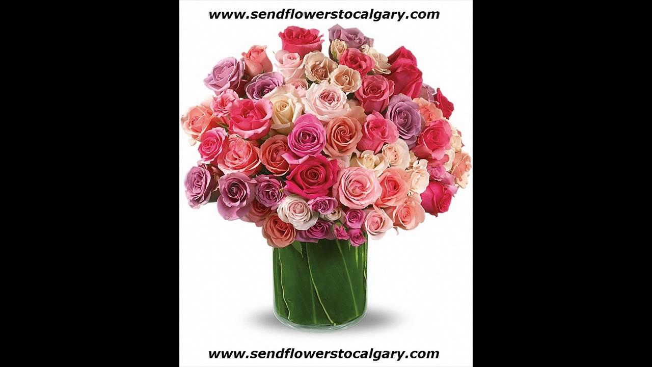 Livraison de fleurs montr al youtube for Livraison de fleurs demain