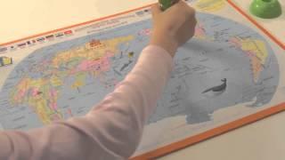 Английский для начинающих. Многоязычная настенная карта мира.
