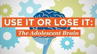 Use It or Lose It: The Adolescent Brain
