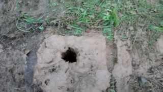 Абиссинский колодец - Неудача №1 (15 метров)(Абиссинский колодец удивительная вещь. Установив в скважину трубу с фильтром можно получить воду исключит..., 2013-07-30T10:46:21.000Z)