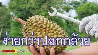 ปอกทุเรียนขั้นเทพ ไม้ต้องง้อมีด  ง่ายเหลือเชื่อ  How To Peel Thai Durian ..Very Easy