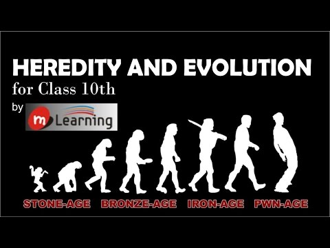 Heredity & Evolution: Mutation, Sexual Recombination - 05 For Class 10th and NTSE
