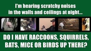 What S That Attic Noise Part 1 Видео из игры Майнкрафт
