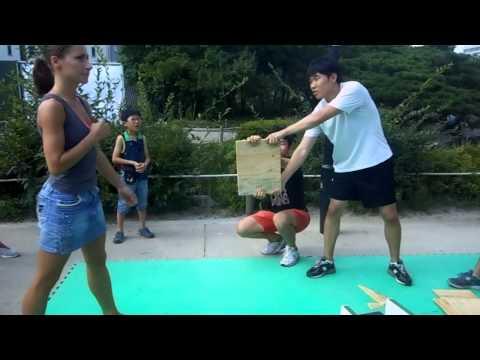 Séoul - Namsangol Hanok Village - Taekwondo