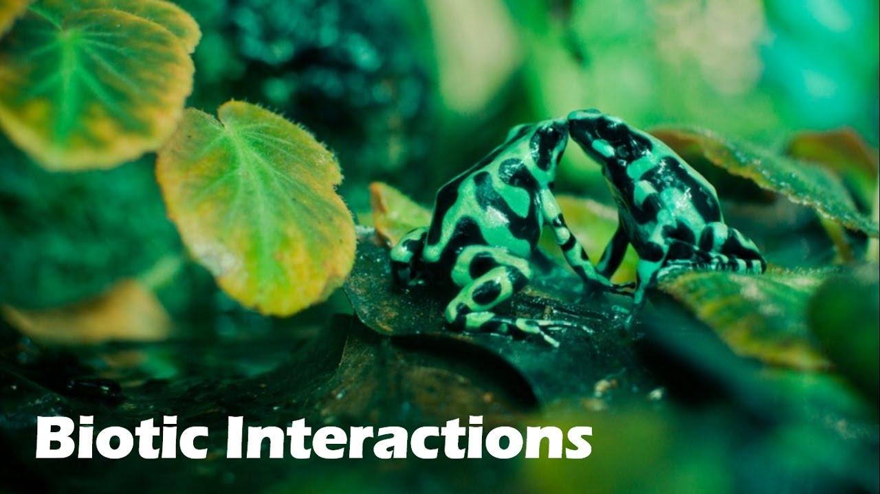BIOTIC INTERACTIONS PDF DOWNLOAD