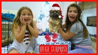 OPENING EARLY CHRISTMAS PRESENT / A NEW PUPPY / AMAZING SURPRISE