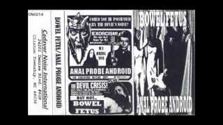 BOWEL FETUS - Tracks from Split Tape w/ Anal Probe Android (2003)