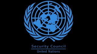 UN SECURITY COUNCIL TO DEBATE ON A MEETING OF CAMEROON AND THE AMBAZONIA CONFLICT