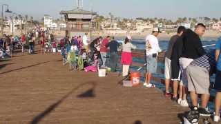 Imperial Beach Pier Fishing San Diego,CA.# 2