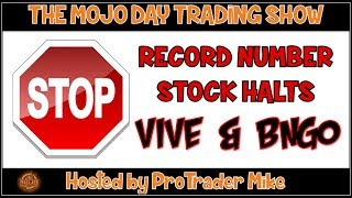 STOCK HALT CITY VIVE & BNGO 🛑 What is Stock Halt & How Does it happen?
