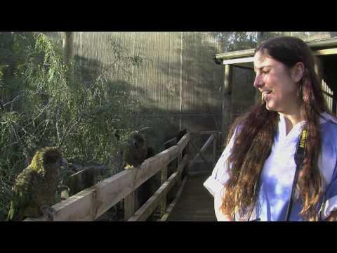 Orana Wildlife Park - Offside Guide