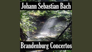 brandenburg concerto no 6 in b flat major bwv 1051 i allegro