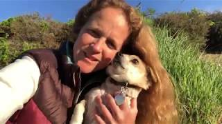 The Pet Psychic Talks To Dog Felix About His Dental