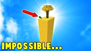 THE IMPOSSIBLE MINECRAFT CHALLENGE...