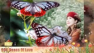 999 Roses Of Love