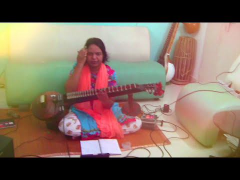 punya srinivas veena album sound of swan