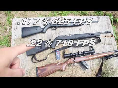 BB gun vs 22LR CCI