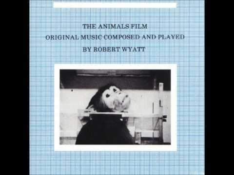 Robert Wyatt - The Animals Film Soundtrack (1982)
