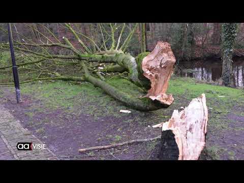 Hevige storm zorgt voor veel schade in Almelo