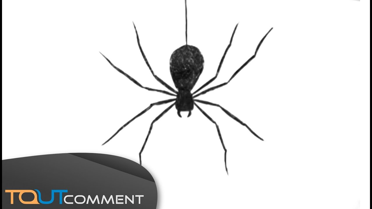 Draw a spider man comment dessiner une araign e youtube - Dessiner spiderman facile ...