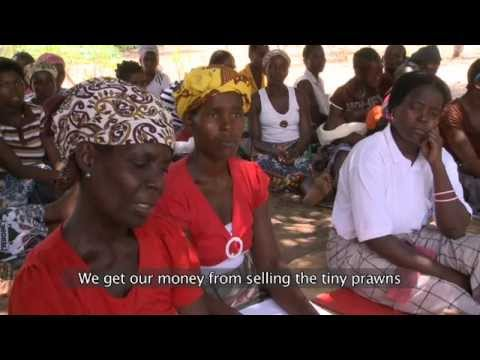 MOZAMBIQUE RURAL FINANCE SERIES - VIDEO 1: Savings & Credit Groups