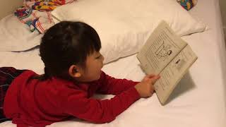 """Yosan reading """"Amelie the seal fairy"""""""