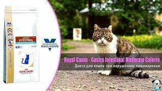 Диета для кошек при нарушении пищеварения · Royal Canin Gastro Intestinal Moderate Calorie