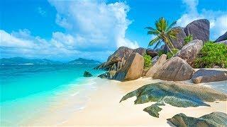 Beach in Paradise, the beaches of  Seychelles