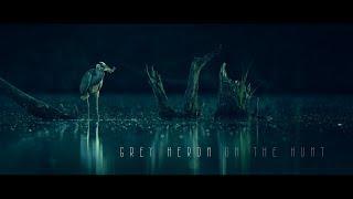 Heron OnTheHunt