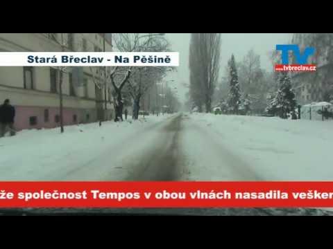 Sněhová kalamita - Břeclav - leden 2010