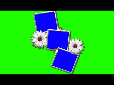 Creative Photo Frames In Green Screen Free Stock Footage
