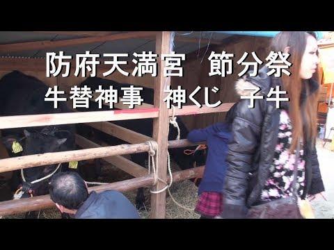 防府天満宮 節分祭・牛替神事「子牛(御神䦰)」2014