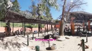 LA Zoo Documentary