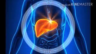 जानिए लीवर ख़राब होने के संकेत! Signs of liver being damaged!