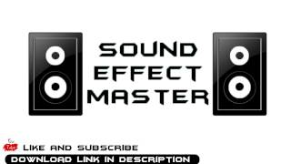 Camera Shutter sound effect #1 + Download Link