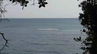 видео Взрывы в Черном море