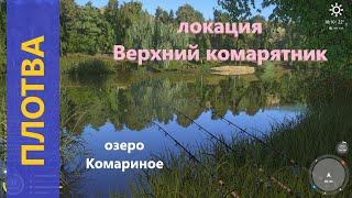 Русская рыбалка 4 озеро Комариное Плотва под березой