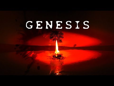 English version: Psychedelic ASMR from Heaven: GENESIS