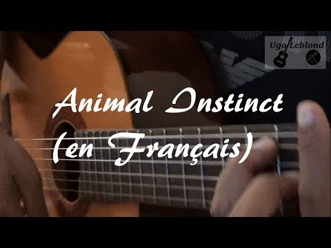 Animal Instinct || The Cranberries (french guitar cover)