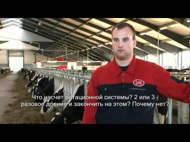 Lely Astronaut A4 - Milking robot (Russian / Denmark)