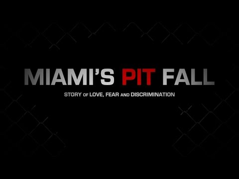 Miami's Pit Fall