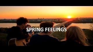 NINO 3RUN FAMILY   Spring feelings
