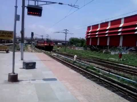RJ'S NIKKY : COW WELCOMES PATNA KOTA EXPRESS THAT ARRIVED WITH WAP4E