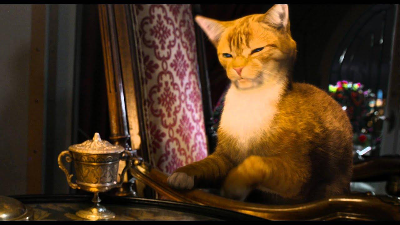 Gargamel S Cat Laughing