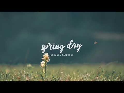 BTS '봄날 (Spring Day)' V (Taehyung) Version - Music Box Edition