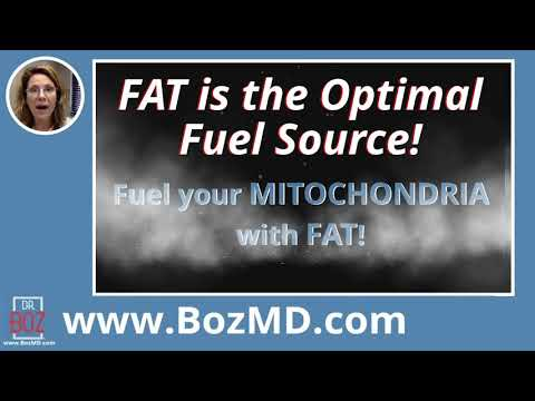 the-power-of-keto-fuel-explained-by-dr-boz!-annette-bosworth-